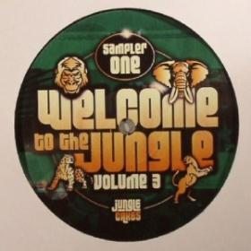 Jungle Cakes 42