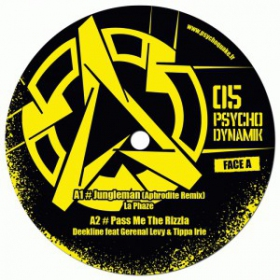 Psychodynamik 05