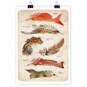 """Poster \""""Feather Fish\"""""""